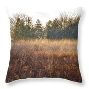 Sparrows Carry Her Name Throw Pillow