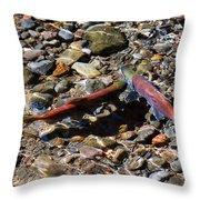 Spawning Salmon - Odell Lake Oregon Throw Pillow