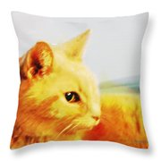 Special And Purfect Throw Pillow