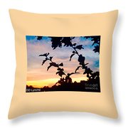 Special View Of Sunset Throw Pillow