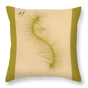 Species Number One F Throw Pillow