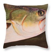Speckled Trout Throw Pillow by Amanda Ladner