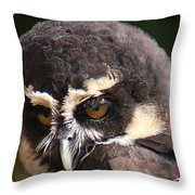 Spectacled Owl Portrait 2 Throw Pillow