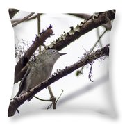 Spectacled Visitor Throw Pillow