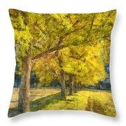 Spectacular  Fall Foliage Pencil  Throw Pillow