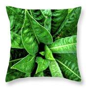 Spectacular Green Foliage Throw Pillow