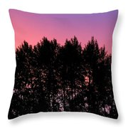 Spectacular Silhouette Throw Pillow