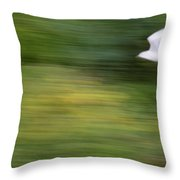 Speed In Flight Throw Pillow