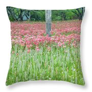 Spellbound By Indian Paint Brush. Throw Pillow