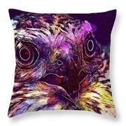 Sperber Raptor Plumage Bird Of Prey  Throw Pillow