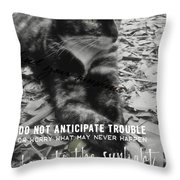 Sphinx Quote Throw Pillow