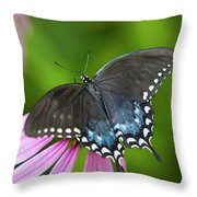 Spice Of Life Butterfly Throw Pillow