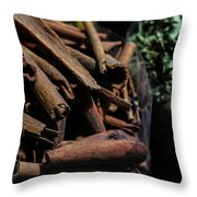 Spice Up2 Throw Pillow