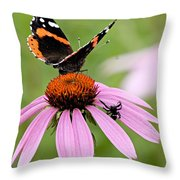 Spider And Butterfly On Cone Flower Throw Pillow