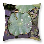 Spider And Lillypad Throw Pillow