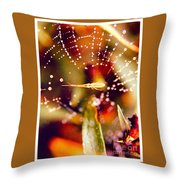 Spider And Spider Web Throw Pillow