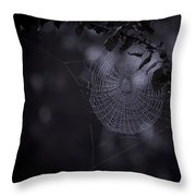Spider Art Throw Pillow
