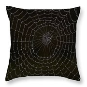 Spider Cobweb  Throw Pillow