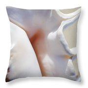 Spider Conch Shell Throw Pillow