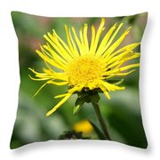Spider Daisy Throw Pillow