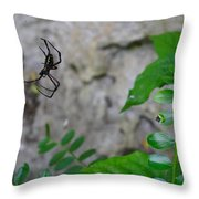 Spider In Thin Air Throw Pillow