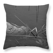 Spider In Water Throw Pillow