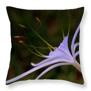Spider Lilly Blue Throw Pillow by Susanne Van Hulst