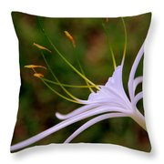 Spider Lilly Flower 2 Throw Pillow