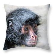 Spider Monkey Face Closeup Throw Pillow