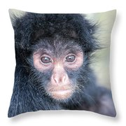 Spider Monkey Face Throw Pillow