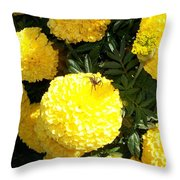 Spider On Marigolds  Throw Pillow