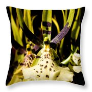 Spider Orchid Throw Pillow