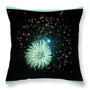 Spider Plant Throw Pillow by Sally Sperry