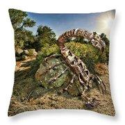Spider Sun Throw Pillow