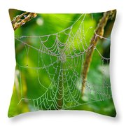 Spider Web Artwork Throw Pillow