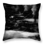 Spider Web Black White Throw Pillow