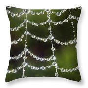 Spider Web Decorated By Morning Fog Throw Pillow