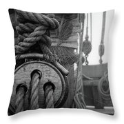 Spider Web Morning  Throw Pillow