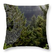 Spider Web Overlook Throw Pillow