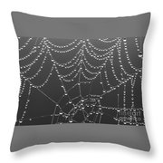 Spider Web Patterns Throw Pillow