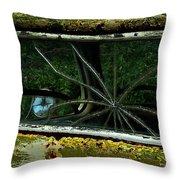 Spider Window Throw Pillow