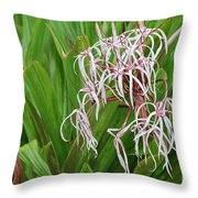 Spider,lily Throw Pillow