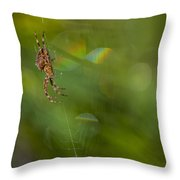 Spider's Cosmos Throw Pillow