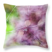Spiderweb In The Mist Throw Pillow
