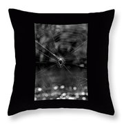 Spiderweb Throw Pillow