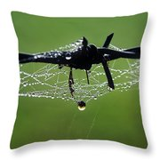 Spiderweb On Fencing Throw Pillow
