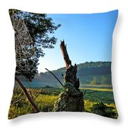 Spiderweb With Dew Throw Pillow