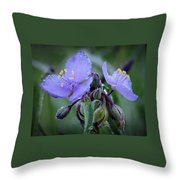 Spiderwort Throw Pillow by James Barber
