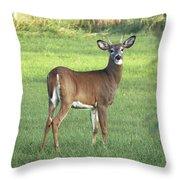 Spikehorn Whitetail Throw Pillow
