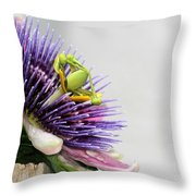 Spikey Passion Flower Throw Pillow